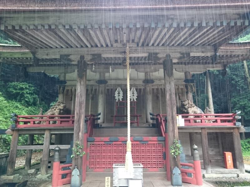 f:id:sasurai-neko:20160701232000j:plain