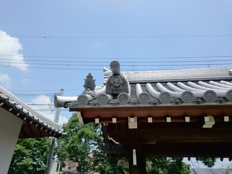 f:id:sasurai-neko:20160808120548j:plain