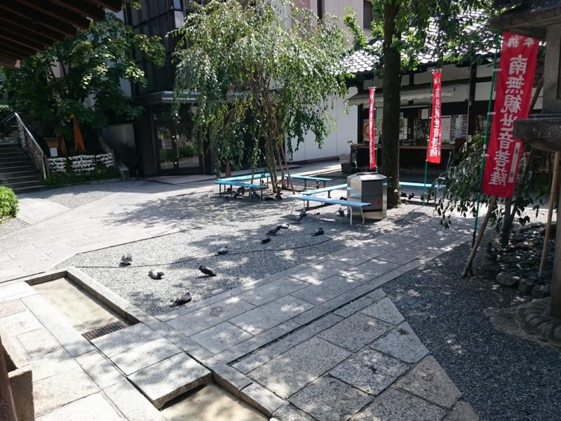 f:id:sasurai-neko:20160914110155j:plain