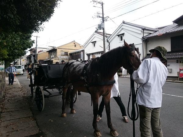f:id:sasurai-neko:20161005163946j:plain