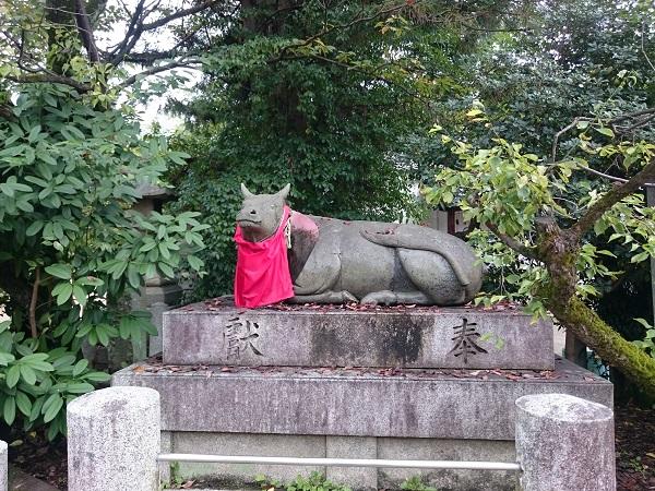 f:id:sasurai-neko:20161005164018j:plain