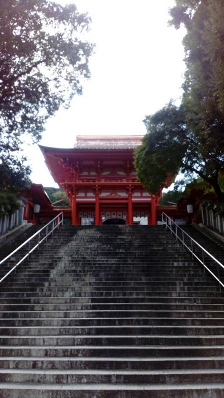 f:id:sasurai-neko:20161026115844j:plain