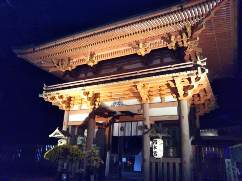 f:id:sasurai-neko:20161130140222j:plain