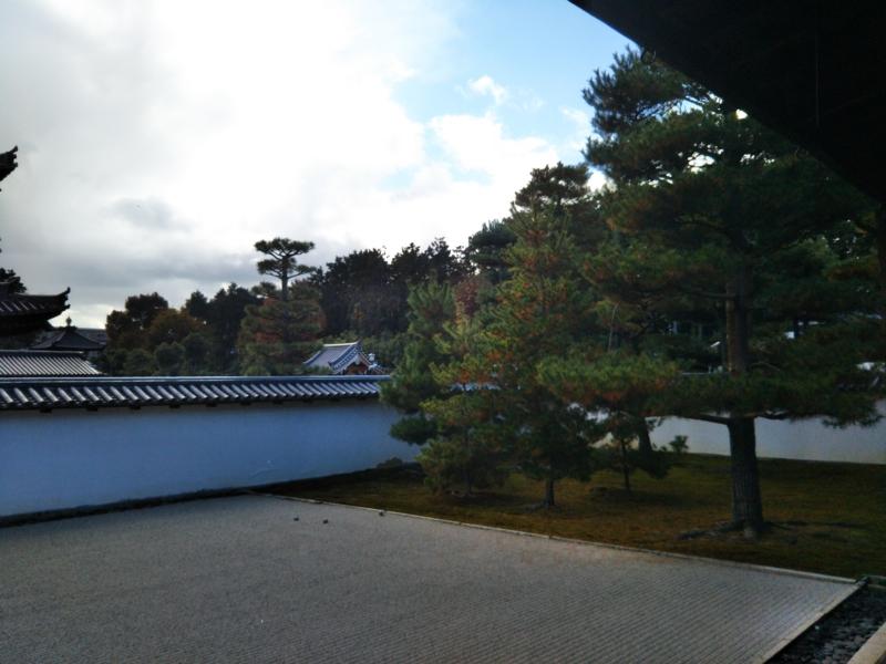 f:id:sasurai-neko:20161130140413j:plain