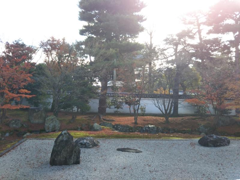 f:id:sasurai-neko:20161130140425j:plain