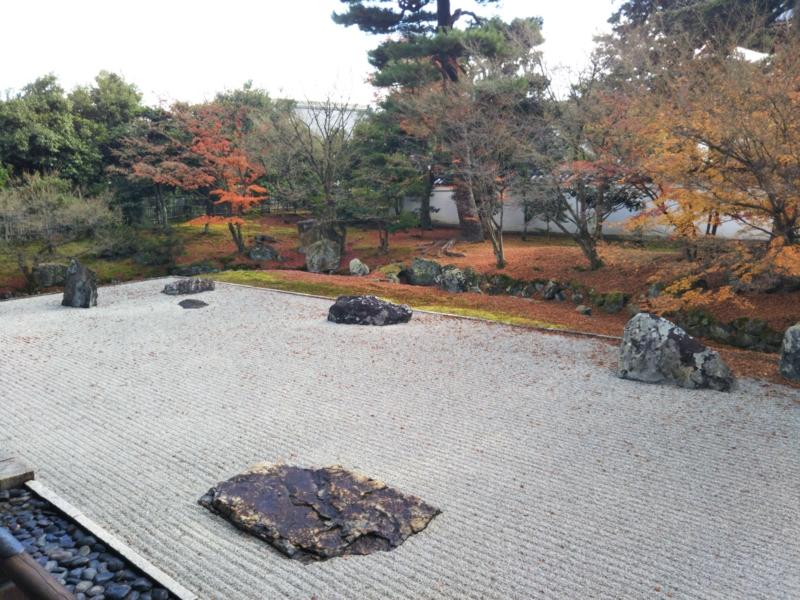 f:id:sasurai-neko:20161130140426j:plain