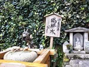 f:id:sasurai-neko:20161207163221j:plain