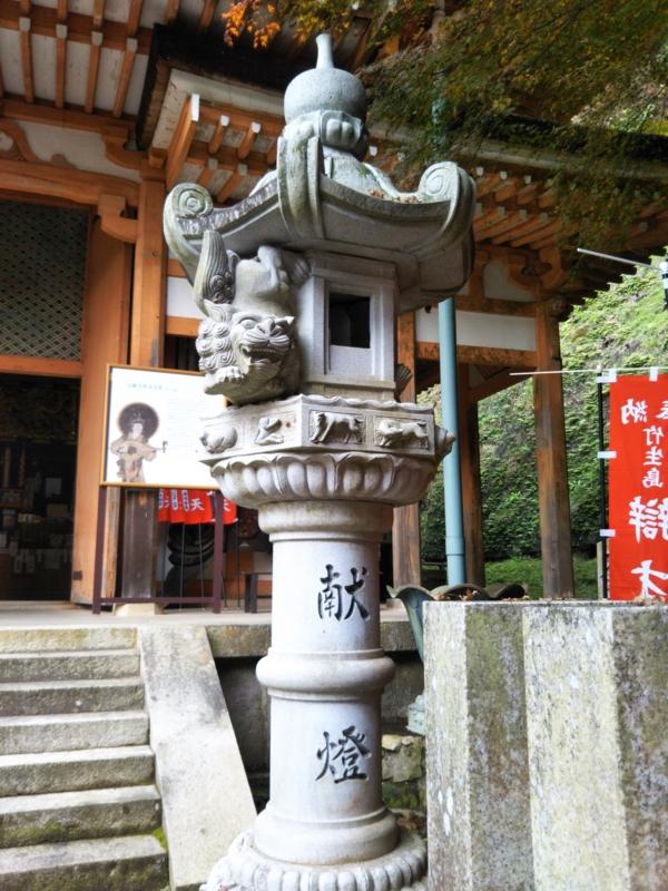 f:id:sasurai-neko:20161207163225j:plain
