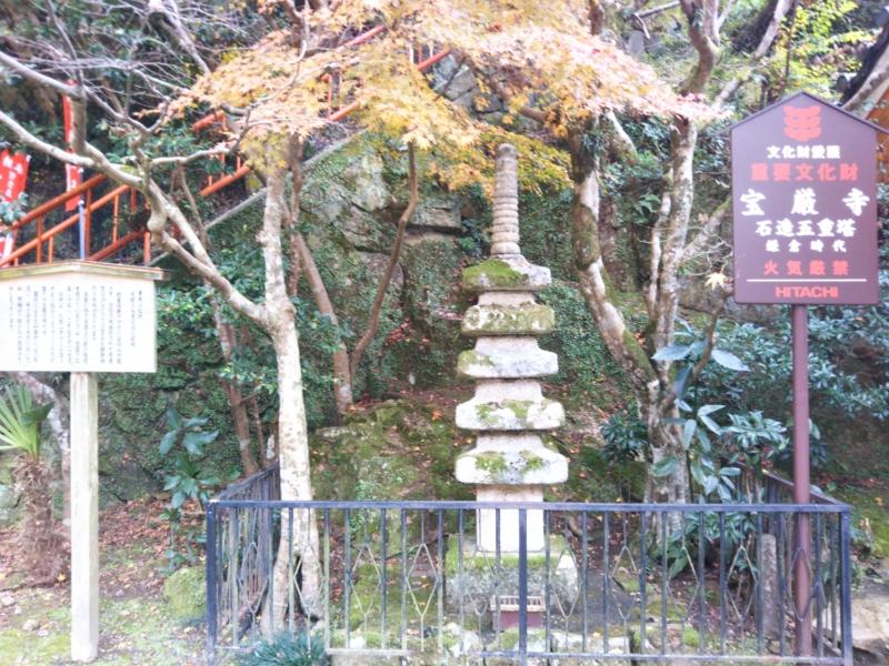 f:id:sasurai-neko:20161207163227j:plain