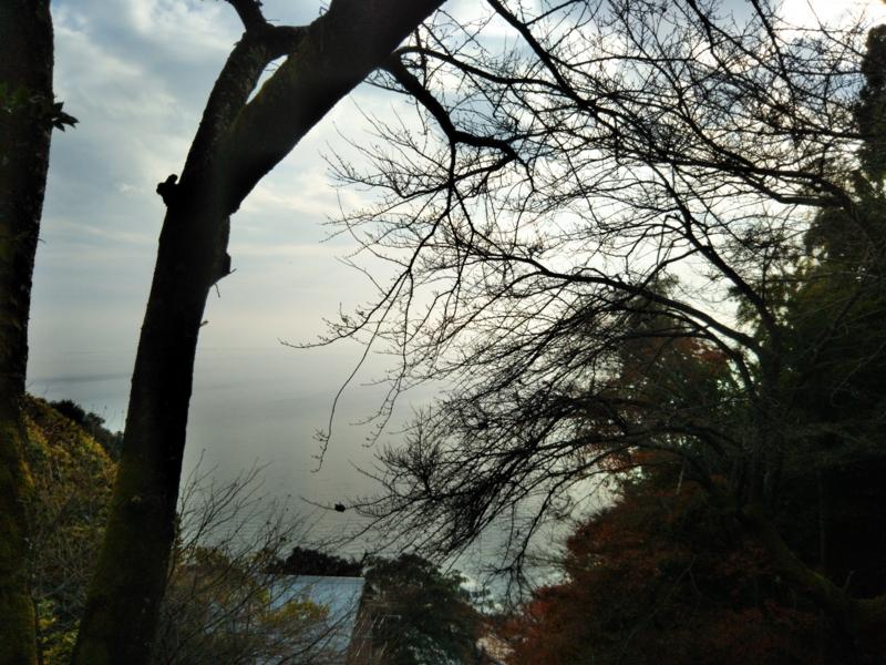 f:id:sasurai-neko:20161207163230j:plain