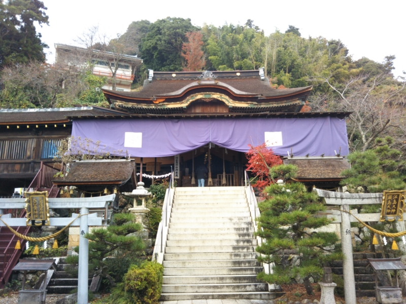 f:id:sasurai-neko:20161207164030j:plain