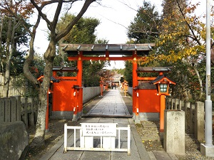 f:id:sasurai-neko:20161228171830j:plain