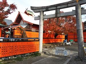 f:id:sasurai-neko:20161228171831j:plain