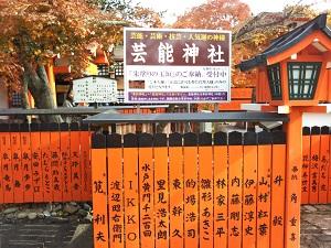 f:id:sasurai-neko:20161228171834j:plain