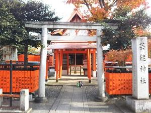 f:id:sasurai-neko:20161228171836j:plain