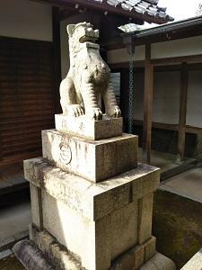 f:id:sasurai-neko:20161228171852j:plain