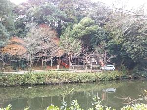 f:id:sasurai-neko:20161228172016j:plain