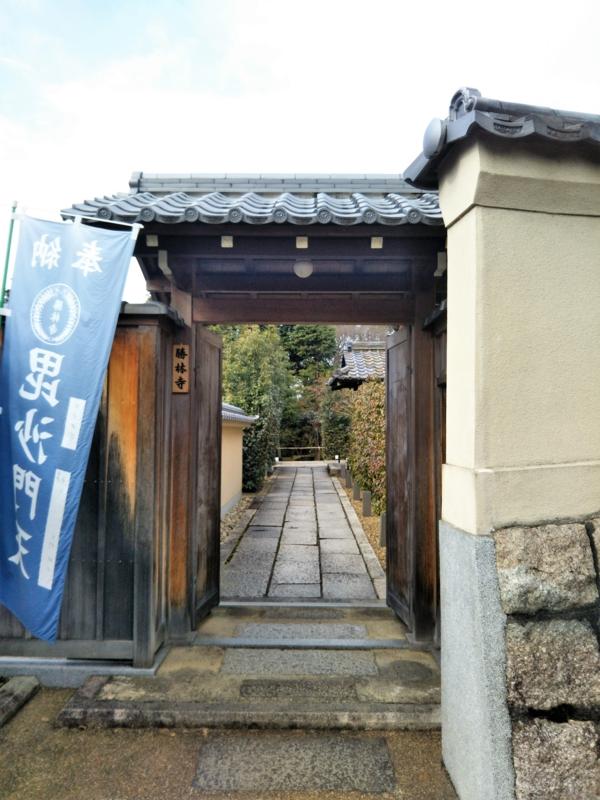 f:id:sasurai-neko:20170126002911j:plain