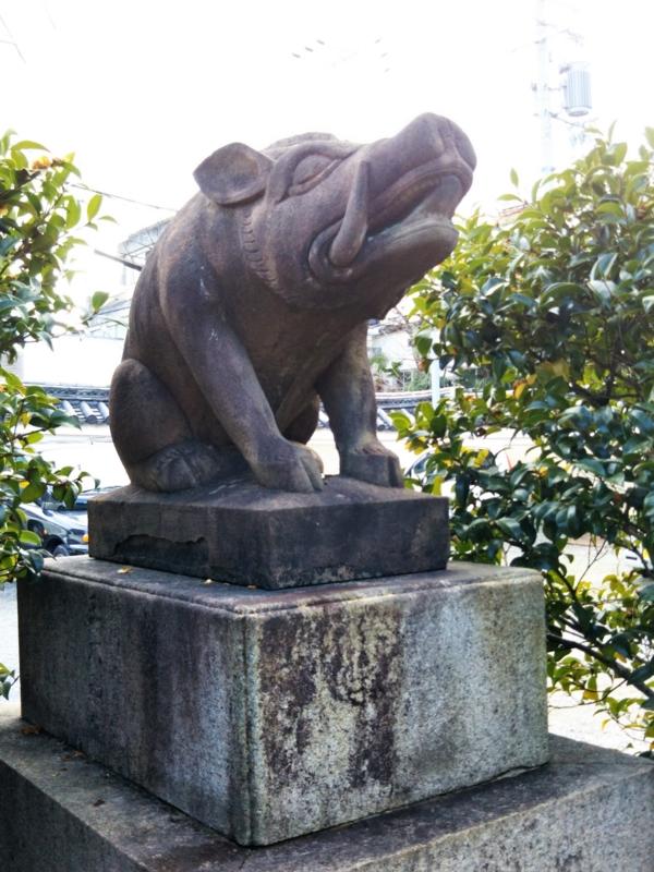 f:id:sasurai-neko:20170126002952j:plain
