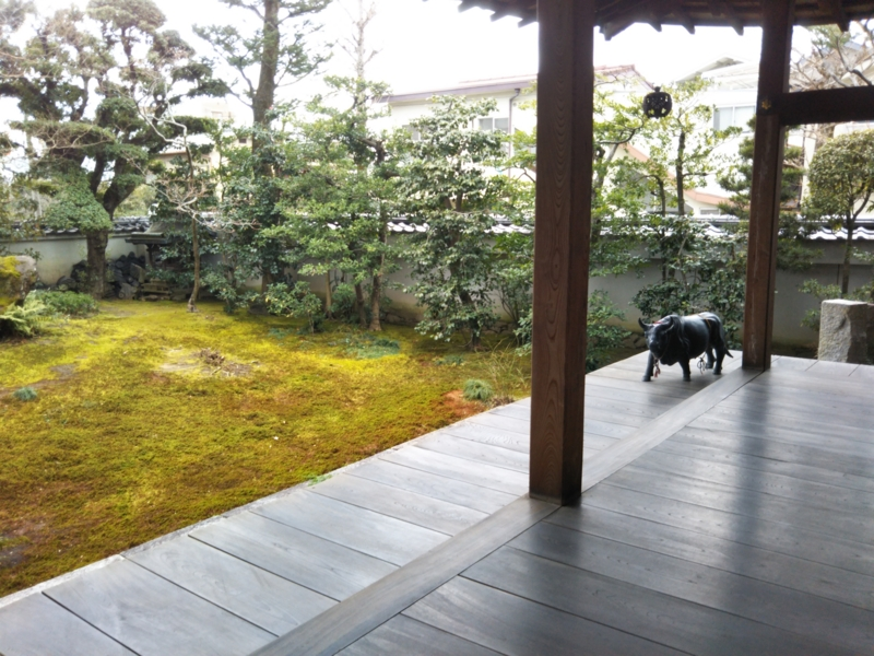 f:id:sasurai-neko:20170209121327j:plain