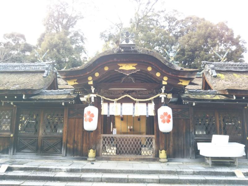 f:id:sasurai-neko:20170209121918j:plain