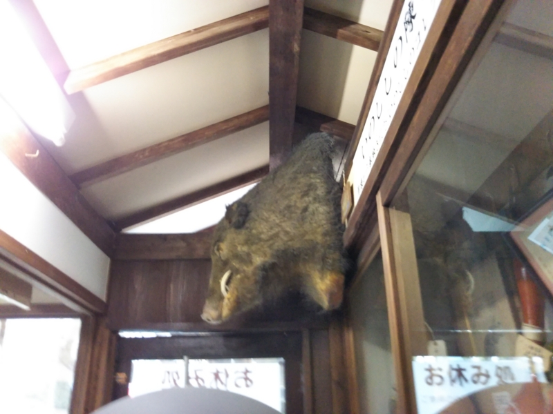 f:id:sasurai-neko:20170209121942j:plain
