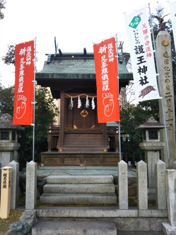 f:id:sasurai-neko:20170209121949j:plain