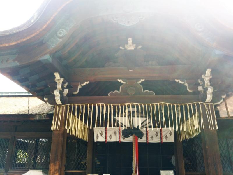 f:id:sasurai-neko:20170423235445j:plain