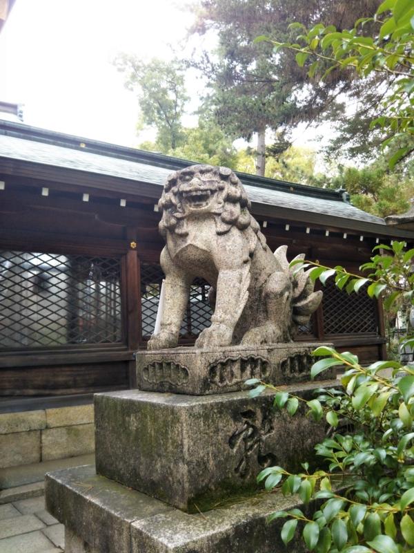 f:id:sasurai-neko:20170424000020j:plain