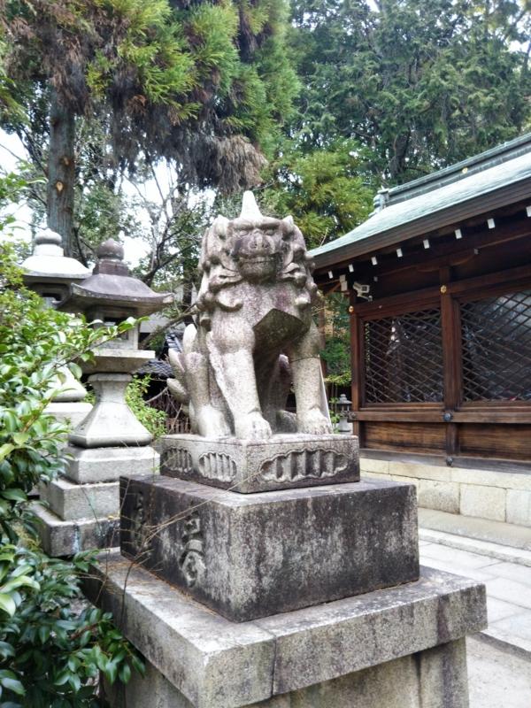 f:id:sasurai-neko:20170424000021j:plain