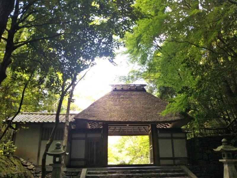 f:id:sasurai-neko:20170527004534j:plain