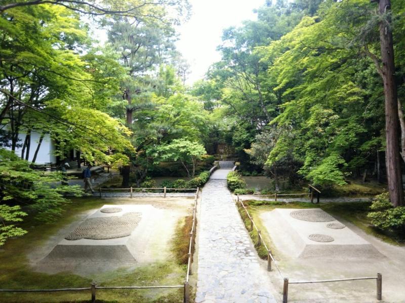 f:id:sasurai-neko:20170527004535j:plain