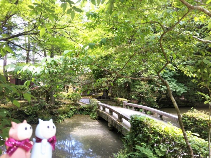 f:id:sasurai-neko:20170527004541j:plain