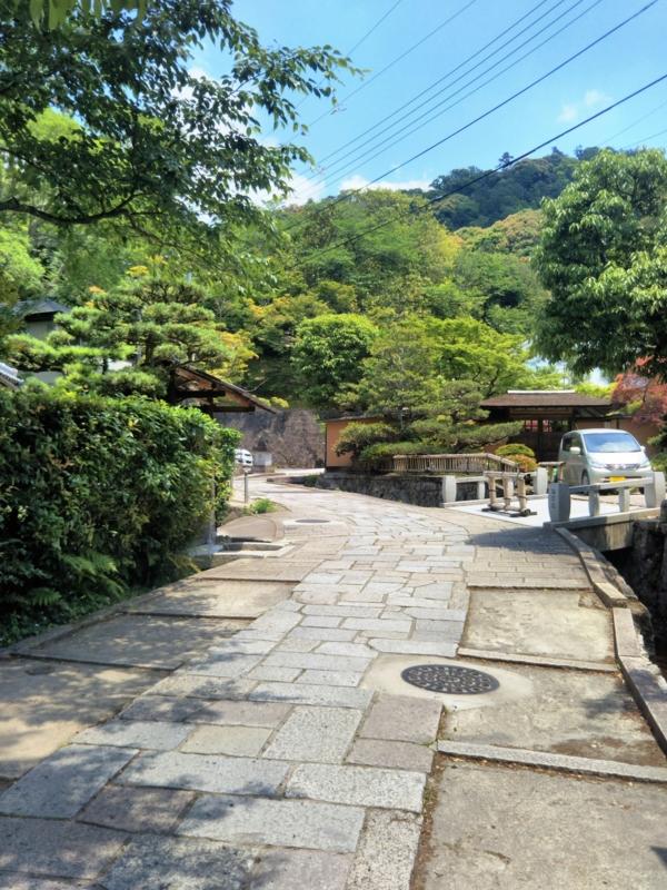 f:id:sasurai-neko:20170527010225j:plain
