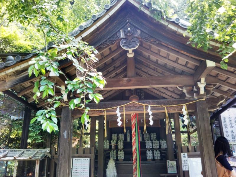 f:id:sasurai-neko:20170527010233j:plain