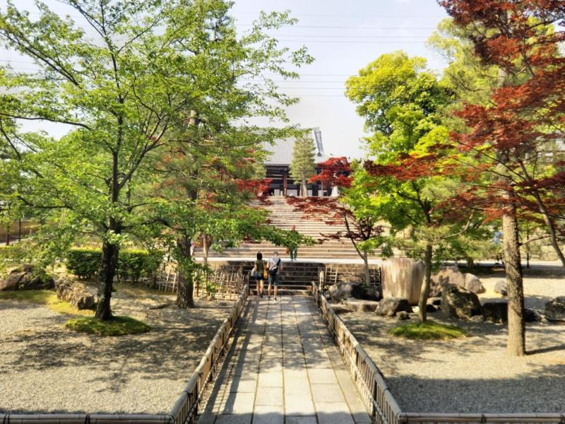 f:id:sasurai-neko:20170527010620j:plain