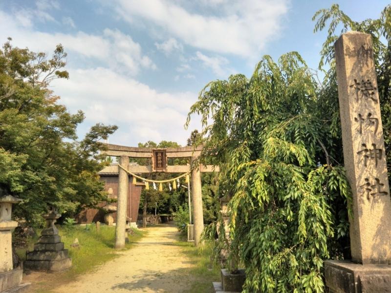 f:id:sasurai-neko:20170627112748j:plain