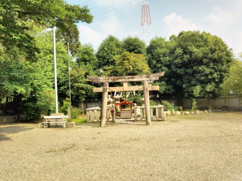 f:id:sasurai-neko:20170627112753j:plain