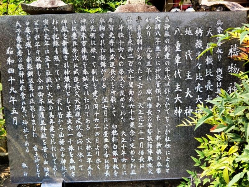 f:id:sasurai-neko:20170627112758j:plain