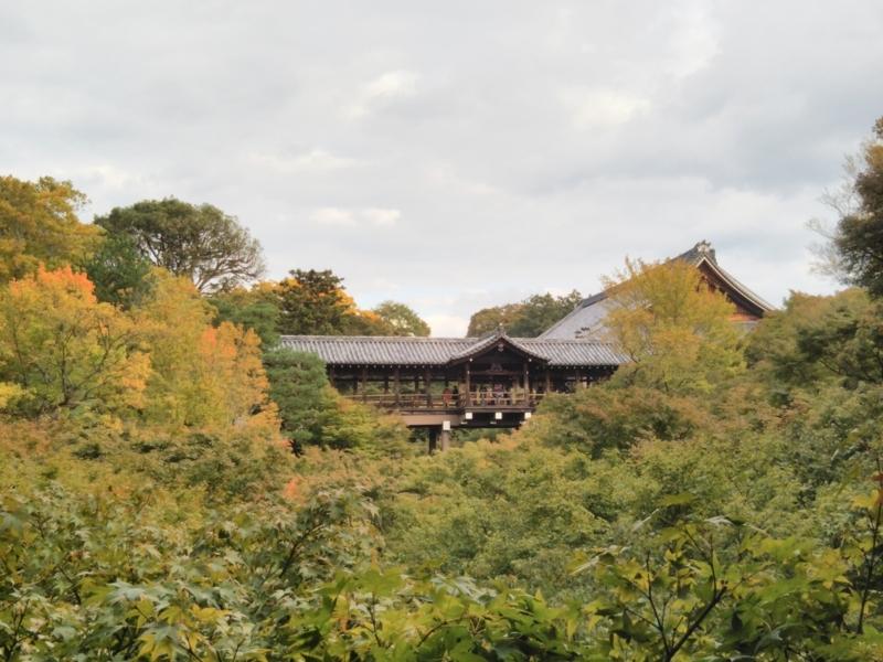 f:id:sasurai-neko:20171031002213j:plain