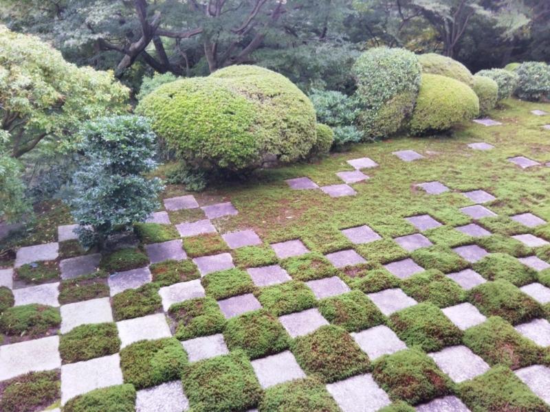f:id:sasurai-neko:20171031002509j:plain