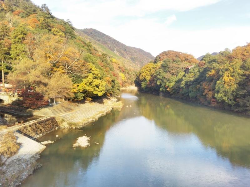 f:id:sasurai-neko:20171122134551j:plain