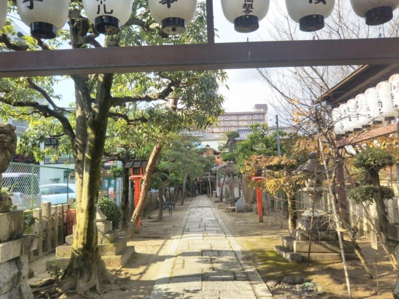 f:id:sasurai-neko:20171129153513j:plain
