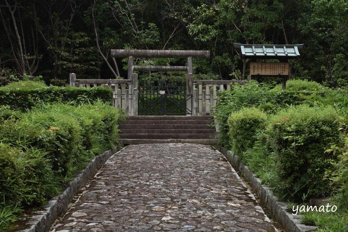 f:id:sasurai1:20200220134346j:plain
