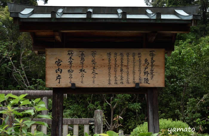 f:id:sasurai1:20200220134500j:plain