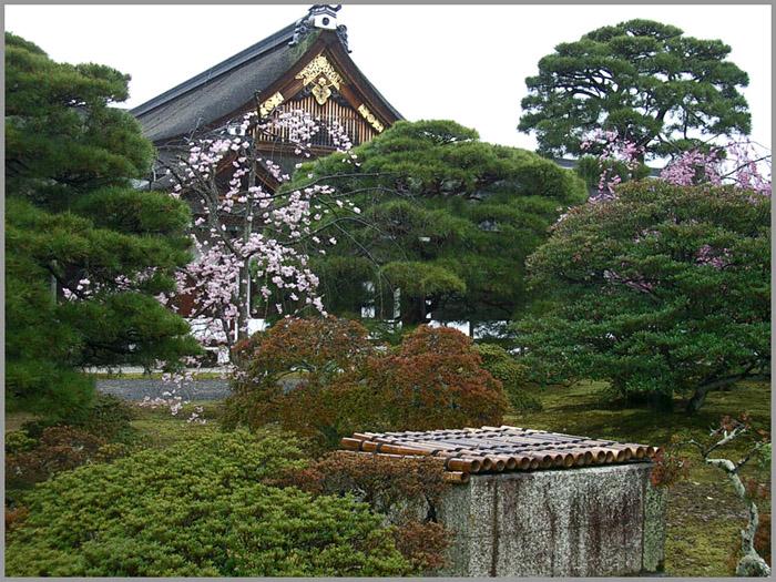 f:id:sasurai1:20200415105751j:plain