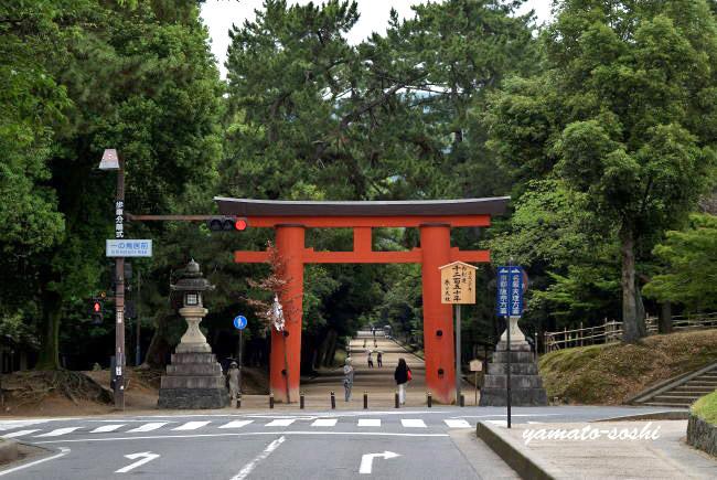 f:id:sasurai1:20200419163525j:plain
