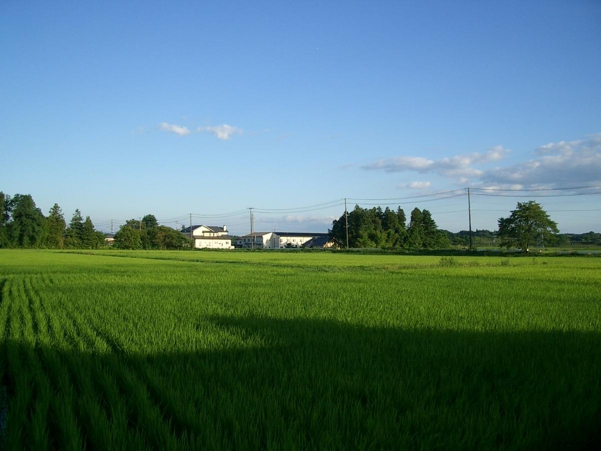 f:id:sasurai1:20200724123058j:plain