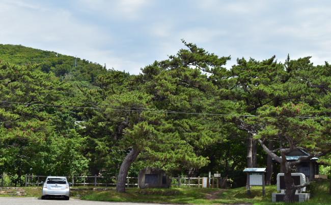 f:id:sasurai1:20201014130152p:plain