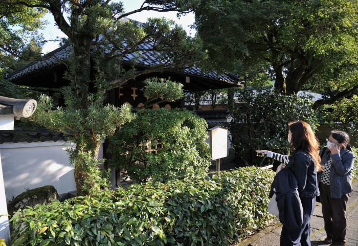 f:id:sasurai1:20201022111724j:plain